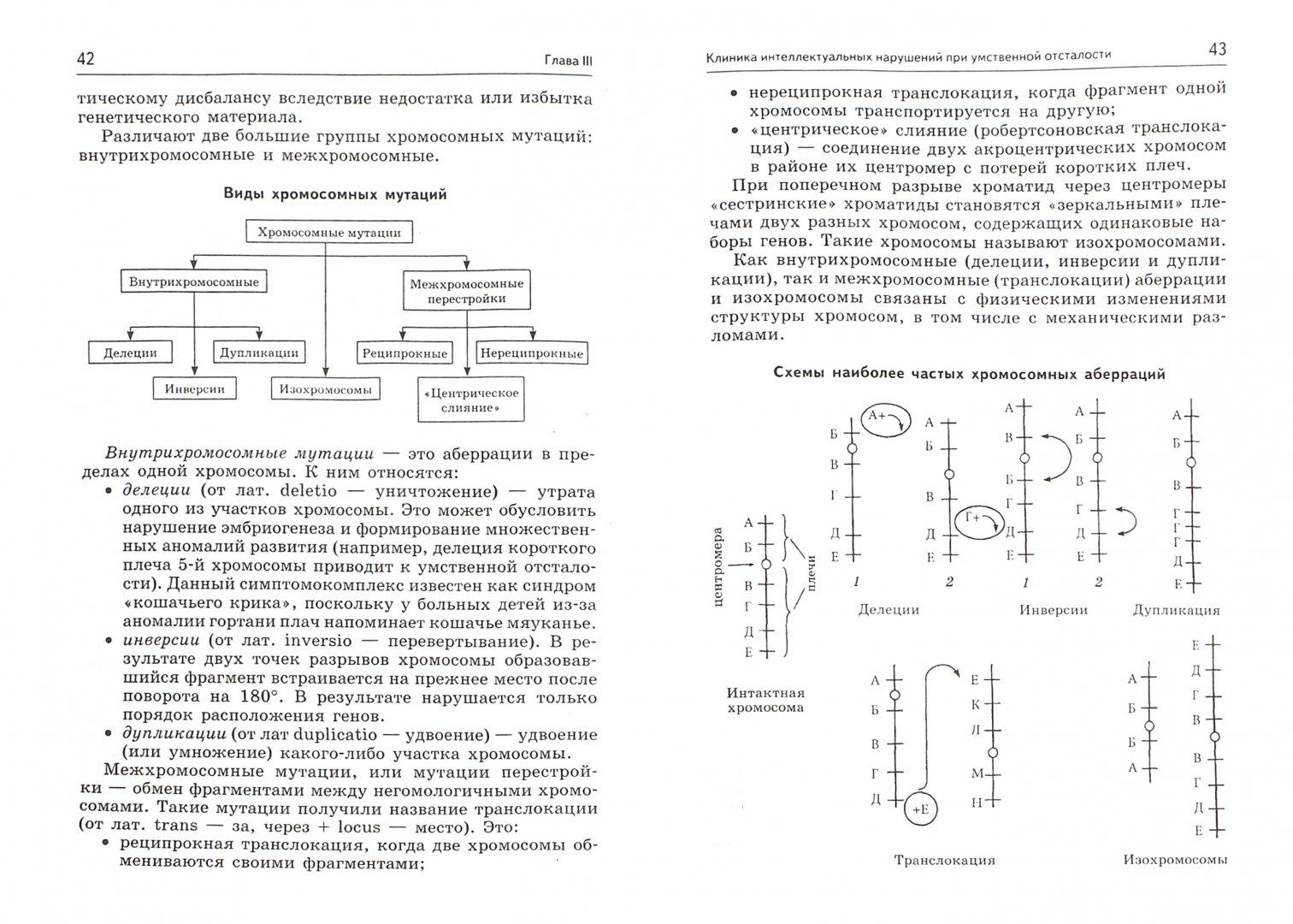 Иллюстрация 1 из 12 для Клиника интеллектуальных нарушений. Курс лекций - Наиля Бакиева   Лабиринт - книги. Источник: Лабиринт