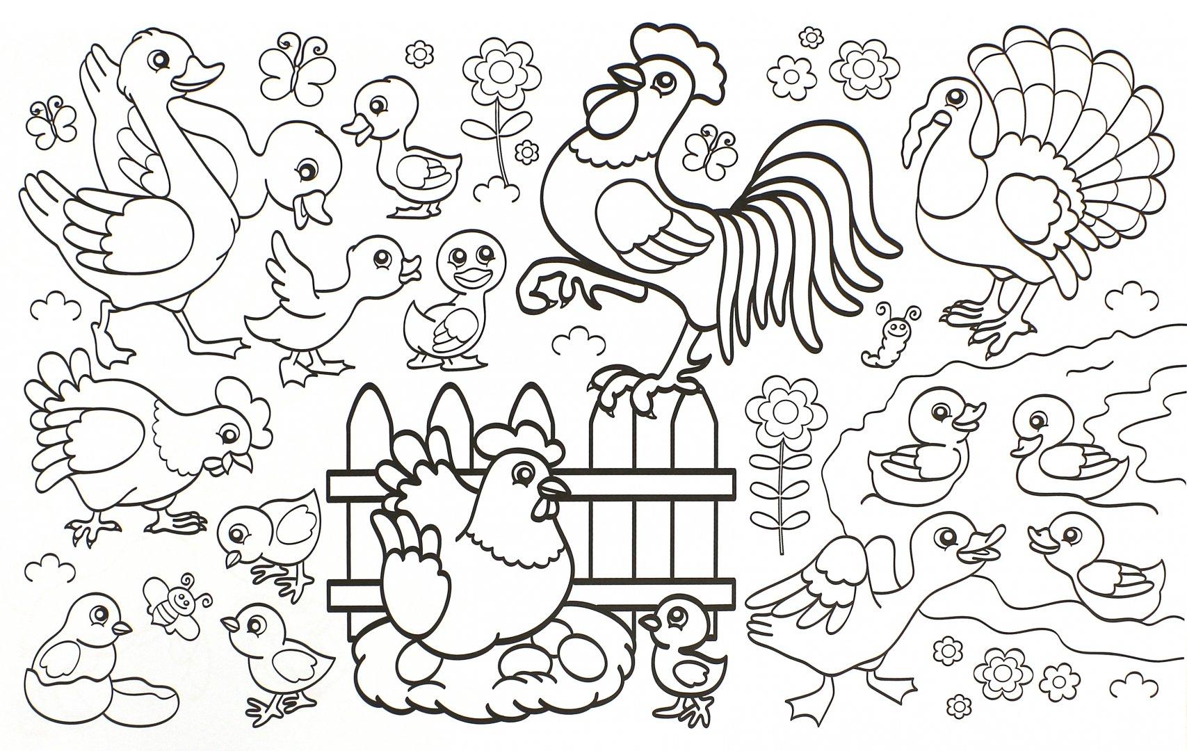 это птичий двор раскраска для малышей подушек безопасности